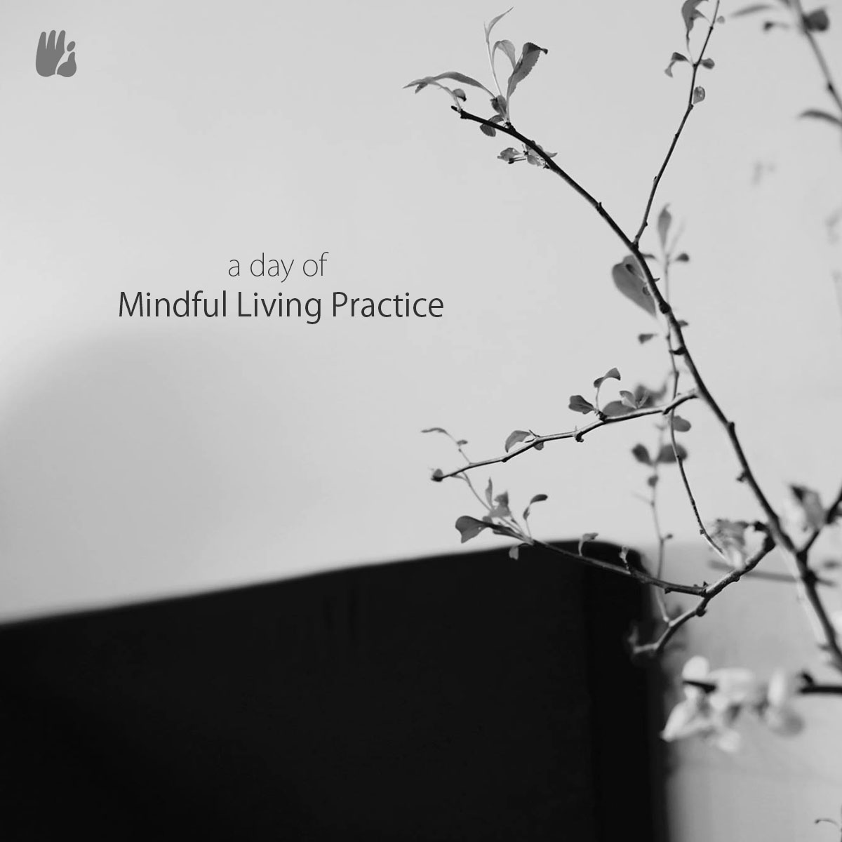 A Day of Mindful Living Practice