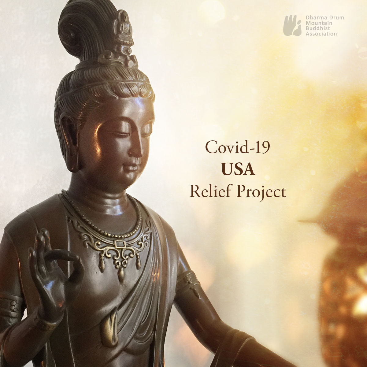 DDMBA COVID-19 USA Relief Project